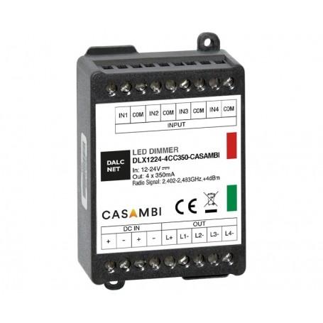 DLX1224-4CC500-CASAMBI-PHO1