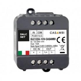 DLC1224-1CV-CASAMBI-PHO1